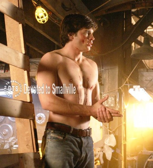 http://paranoialabs.files.wordpress.com/2009/09/tom-welling.jpg